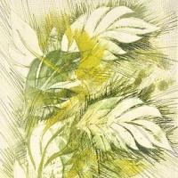 Transformations-Leaf320W