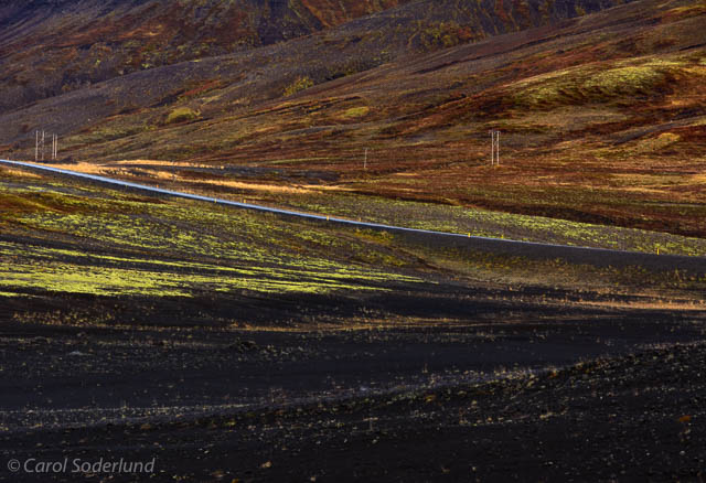 ...the low growing lichens streaking across the terrain