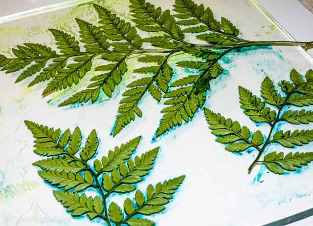 Monoprinting with ferns