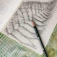 A rubbing of a fern in my sketchbook